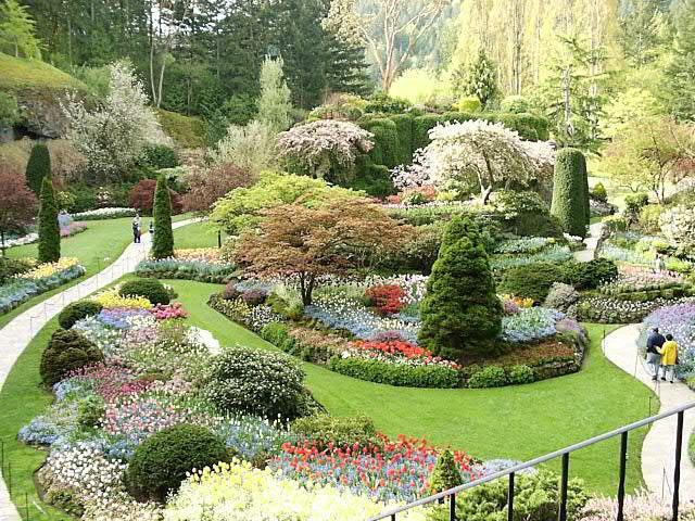 Декоративных культур сад будущего